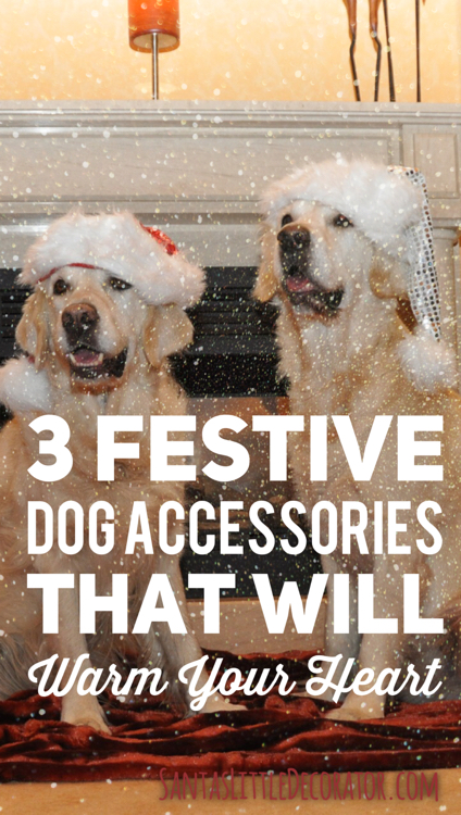 3-festive-dog-accessories-that-will-warm-your-heart